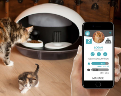 Mobile feed your cat